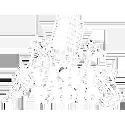 Vaskiradio Logo